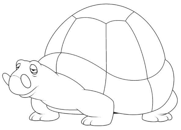 表情 可爱的小乌龟简笔画 可爱的小乌龟图片欣赏 可爱的小乌龟儿童画