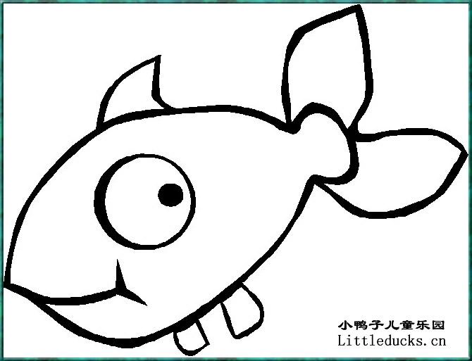 表情 小动物简笔画 鱼的简笔画大全 儿童简笔画鱼动物简笔画 小鸭子儿