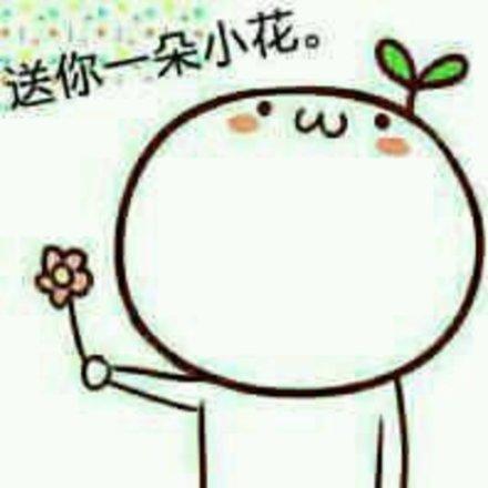 表情 送你一朵小花花表情包 送你一朵小花花微信表情包 送你一朵小花