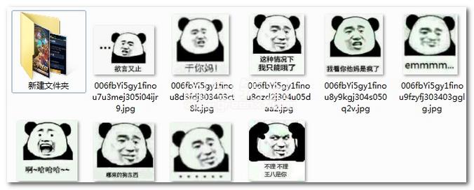 表情 熊猫头怼人表情包 熊猫头怼人qq恶搞表情合集 中文版软件下载 绿色  表情