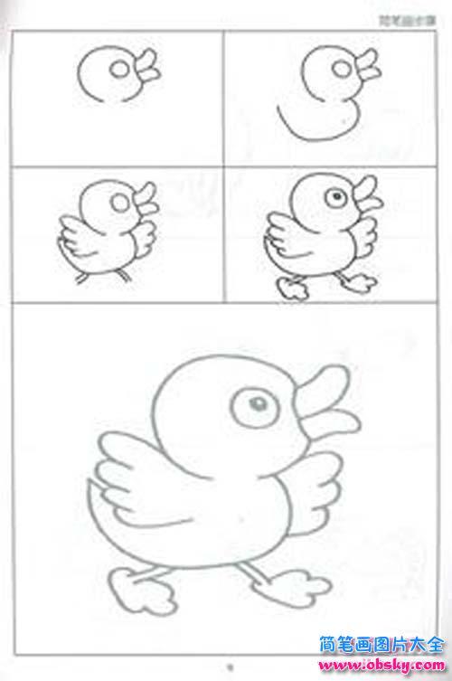 表情 鸭子简笔画画法步骤 简笔画小鸭子 儿童简笔画图片大全 表情