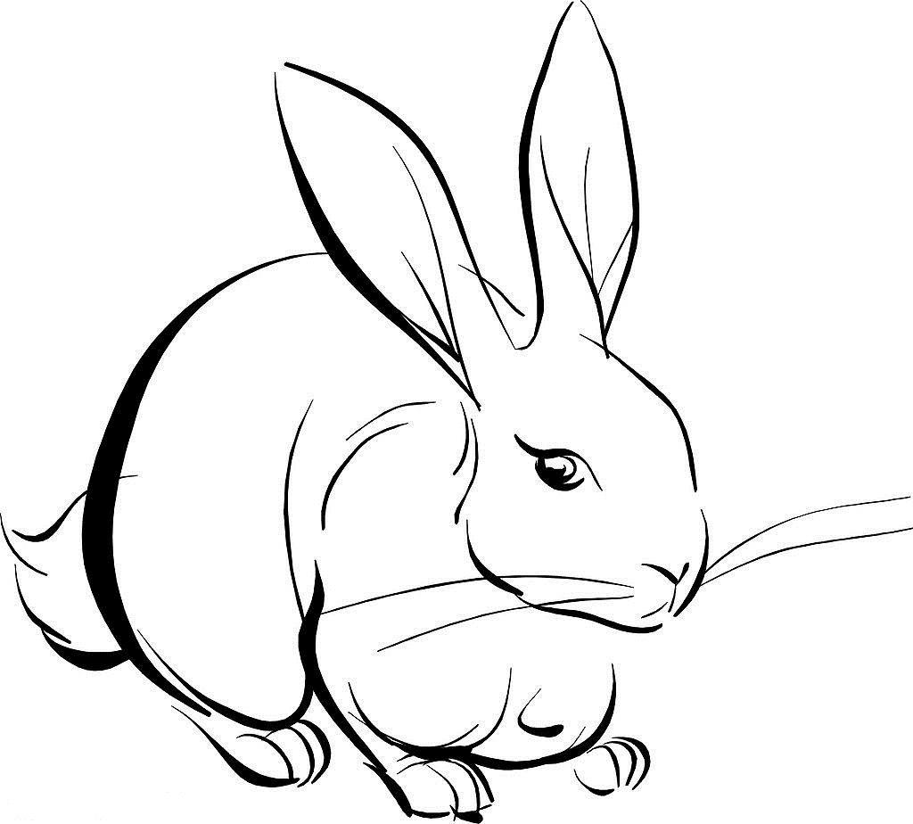 表情 小兔子儿童简笔画大全 幼儿简笔画 表情