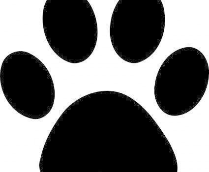 表情 猫爪印简笔画 猫爪牵手成功图片 猫爪牵手表情包gif 猫爪举牌照空