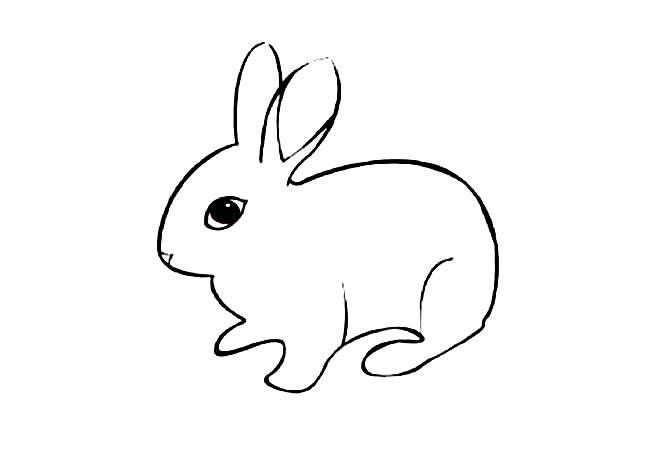 表情 卡通呆萌小兔子简笔画图片小逗汇智幼教网 表情