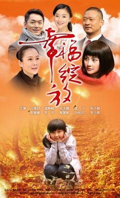 幸福绽放(2012)