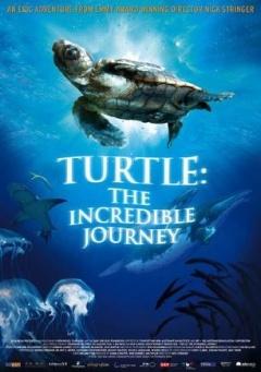 海龟奇妙之旅 (2009)