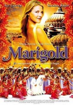 玛丽戈蒂的印度之旅