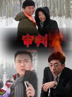 审判(2013)