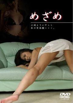 苏醒(2005)