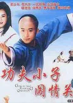 功夫小子闯情关(1996)