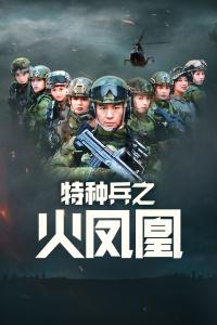 特种兵之火凤凰dvd版