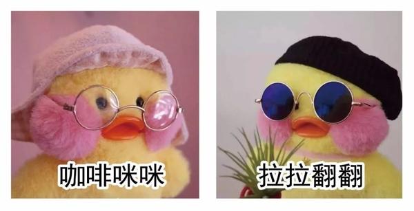谜之疯狂   日本动画 注重卡哇伊 而最可爱的动物绝对非鸭子莫属 鸭子