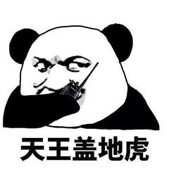 熊猫人武功斗图表情包
