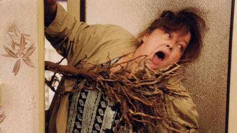 不孕夫妻将树桩当婴儿养