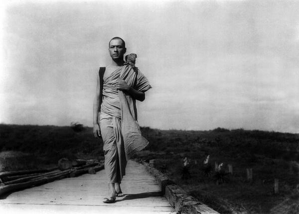 缅甸的竖琴图片