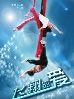 飞翔的爱(2009)