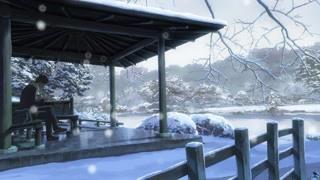 被雪覆盖的绝美公园