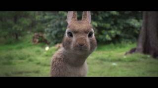 一群兔子狂奔 这一只竟然想搞事情