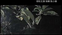孤岛惊魂(恐怖岛片花)