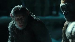 猩球崛起3:凯撒失去猴族信任