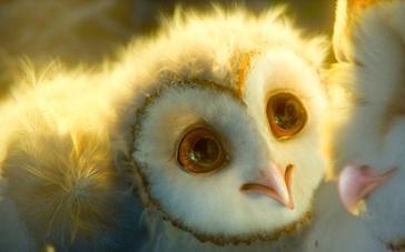 《猫头鹰王国:守卫者传奇》预告片