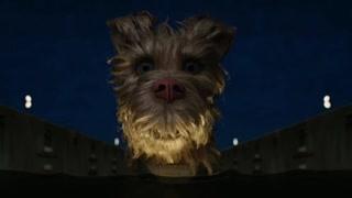 市长的狗使用自己的装备救出了市长儿子 它同时成为了流浪狗首领