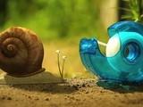 《昆虫总动员》病毒短片之菜园大作战
