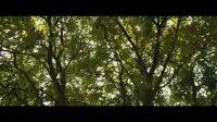 猿族崛起(电视宣传片2)