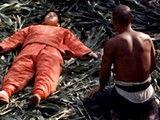 诺贝尔奖获得者莫言小说改编电影《红高粱》片段