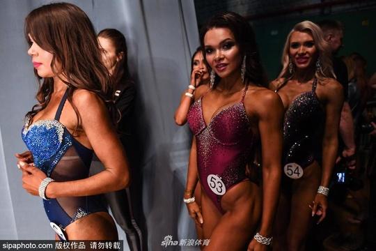 俄羅斯的新西伯利亞健美錦標賽