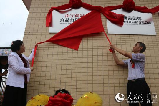 廣西南寧:神冠工業集團三家公司齊揭牌,多點開花縱深發展
