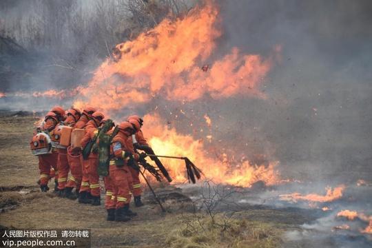 """黑龙江黑河市举行""""龙威2019-1""""森林扑灭火实兵演练"""