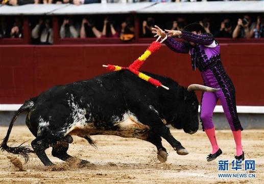 马德里上演斗牛表演