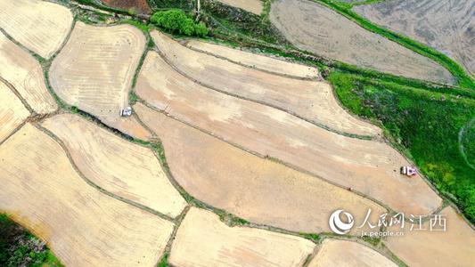 高清图:农机穿梭春播忙