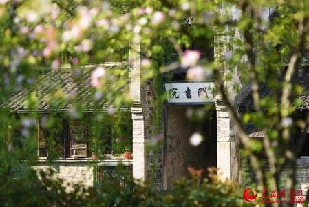浙江乌镇景区将分批恢复开放 全国医务人员免票入园