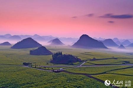 云南罗平旅游业恢复开放 百万亩油菜花进入盛花期