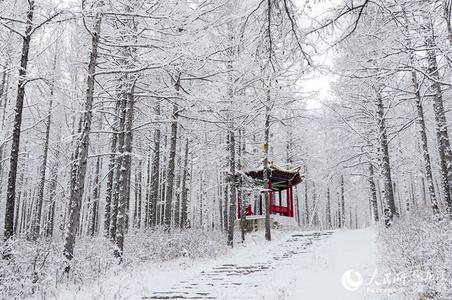 """""""中国爱情小镇""""大兴安岭新林浪漫降雪迎初冬"""