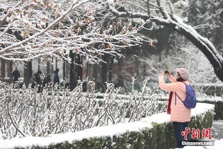 北京迎来今冬初雪 市民踏雪嬉戏赏冬日美景