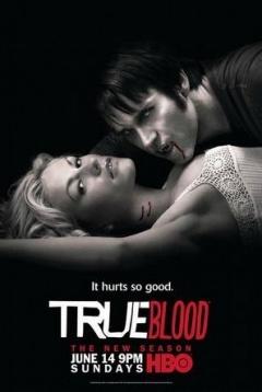 真爱如血第2季