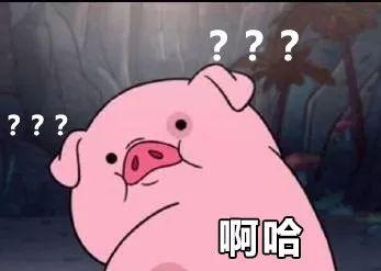 明明是狗年,为什么最火的是蠢萌的猪猪表情包? 轻松一刻 第1张