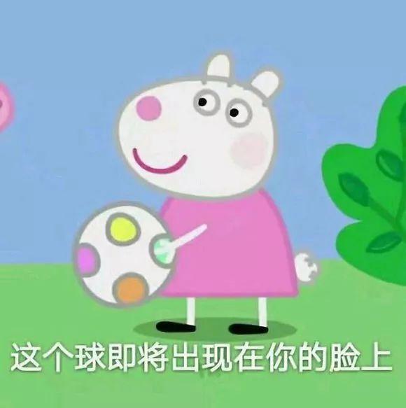 明明是狗年,为什么最火的是蠢萌的猪猪表情包? 轻松一刻 第5张