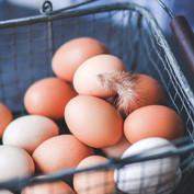 煮鸡蛋用开水还是冷水
