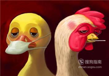 h7n9禽流感症状预防措施