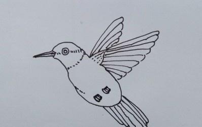 简笔画:鸟的画法教程。画鸟的方法和步骤,简单 照着学就行了