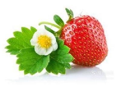 生活经验:[36]如何种植草莓 你值得一看的技巧
