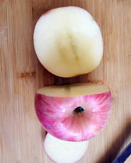 怎么用果蔬来做小动物 具体内容