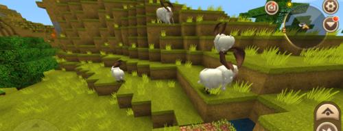 迷你世界羊怎么饲养 迷你世界怎么驯服羊 这几步你要了解