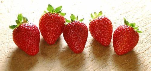 摘草莓的季节是什么时候?,详细始末