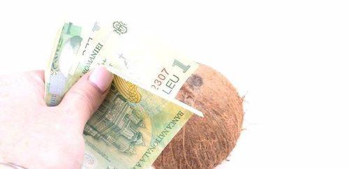 如何购买和储存椰子,详情介绍