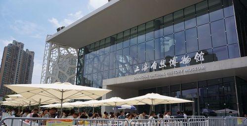 上海自然博物馆旅游攻略,原来是这样的